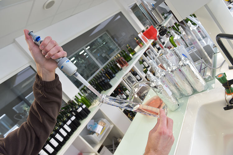 PRIVATE LUXURY WINE HISTORY TOURS