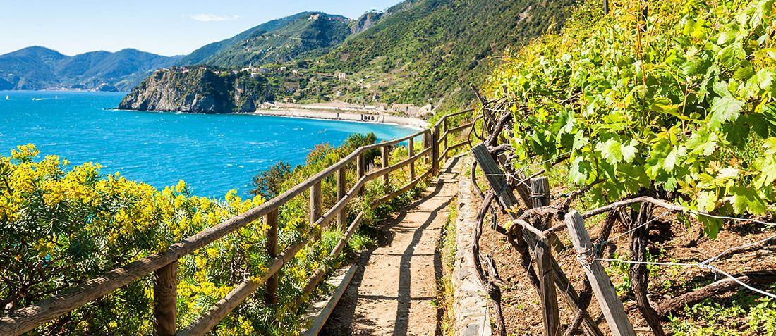 Athens wine tour, private food wine tour, luxury wine tours Greece, Athens wine tasting, cape Sounio, Temple of Poseidon