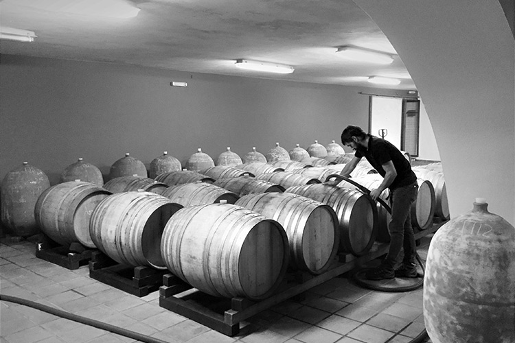 greece-wineries-rouvalis-3