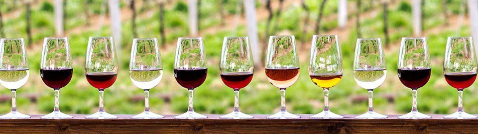 Athens wine tour,Private food wine tasting Athens Greece, Cape Sounio tour, visit Greece